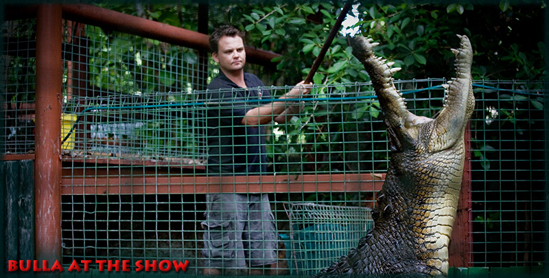 Marineland Melanesia Shows